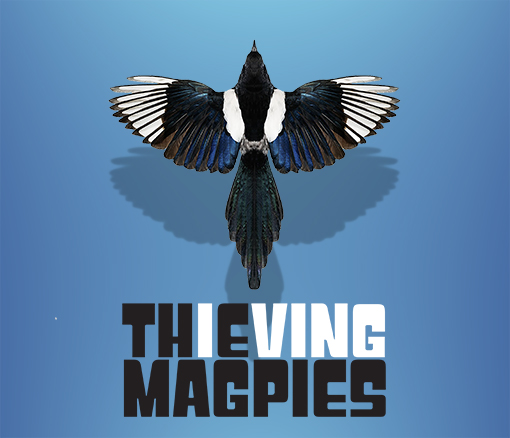 The Thieving Magpies Band Video filming concert Services - Kendal, Cumbria